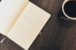 law essay formula